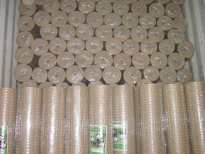 Welded Wire Mesh - Anping County Puersen Hardware Wire Mesh Products ...